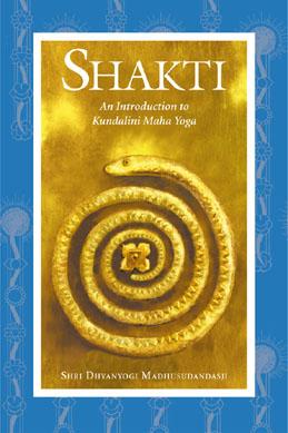 Shri Dhyanyogi Madhusudandasji: Shakti
